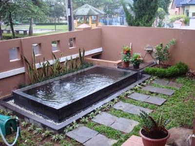 membuat kolam breeding koi di belakang rumah minimalis