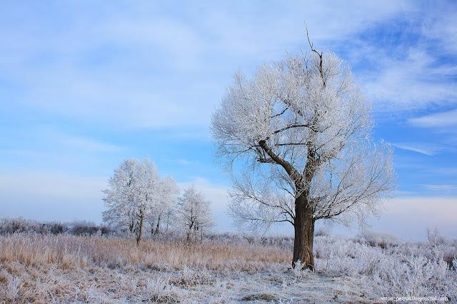 Наконец то зима