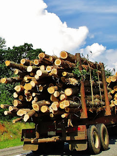 logging-truck-motorcycle
