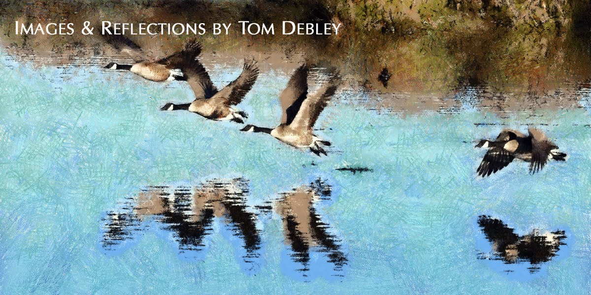 Images and Reflections by Tom Debley