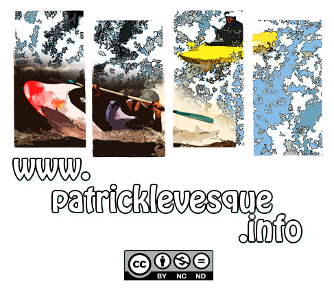 Patrick Levesque