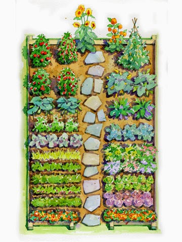 :http://www.bhg.com/gardening/plans/vegetable/easy-childrens-vegetable-garden-plan1/