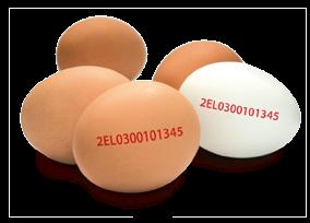 Τι πρέπει να γνωρίζουμε για την αγορά αυγών.