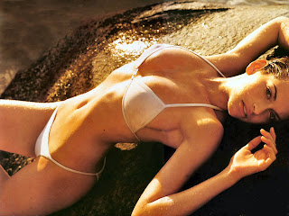 Free Download Bikini Babe Wallpapers