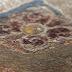 Τι φανερώνουν οι ρόδακες που βρέθηκαν στον τάφο της Αμφίπολης [Εικόνες]