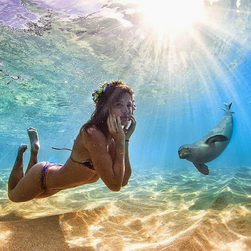 Sexy Girl Swimming Near By Funny Seal