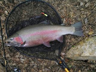 Wisconsin fishing reports november steelhead for Kewaunee fishing report