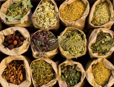 Medical herbs exporters