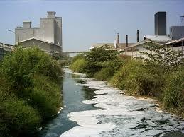 Dampak Limbah Bahan Kimia Sabun dan Deterjen bagi Lingkungan dan Kesehatan