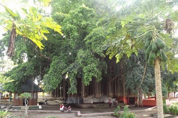 Makam Loang Baloq Lombok