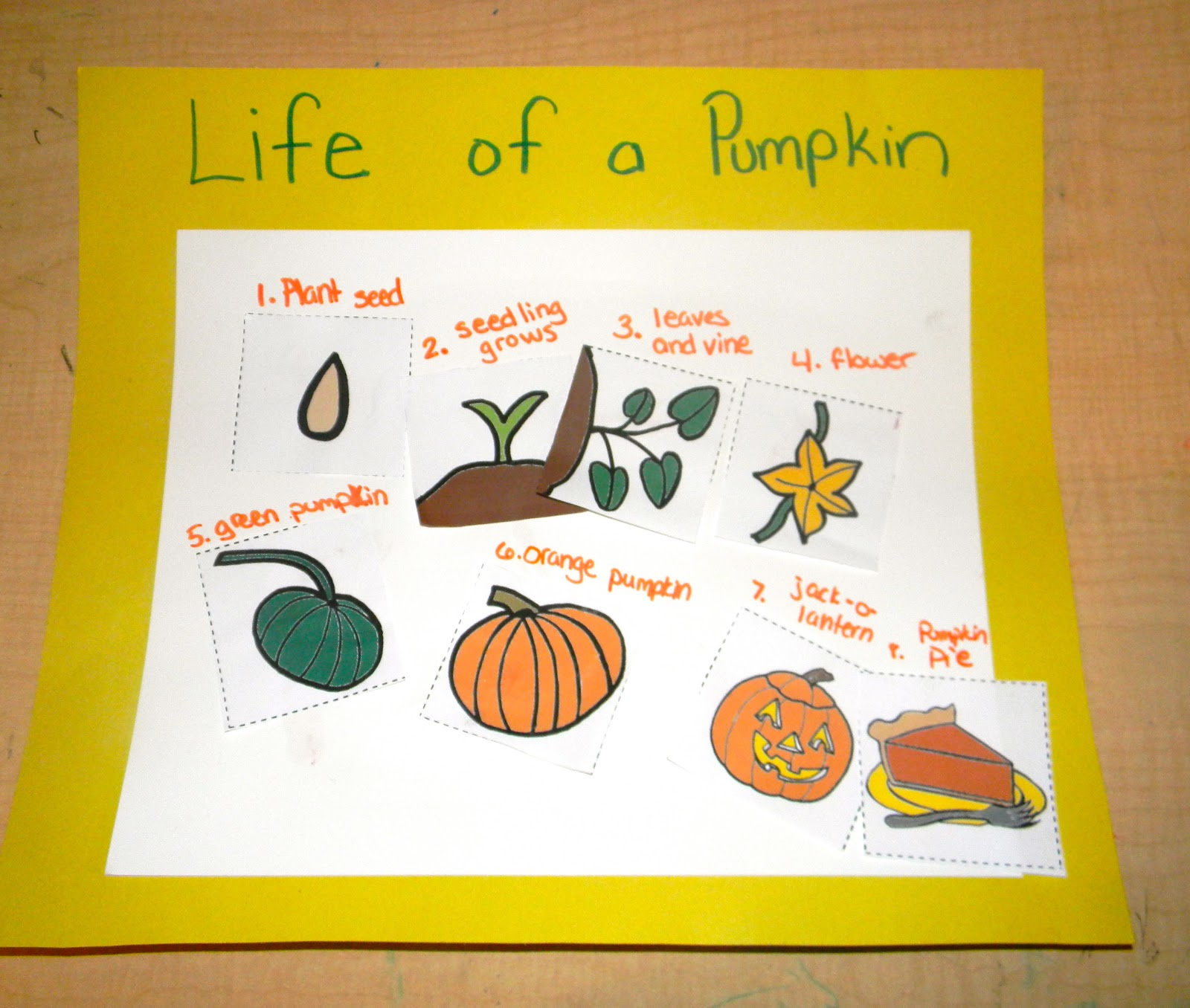 worksheet Parts Of A Pumpkin Worksheet finding the teachable moments pumpkin unit