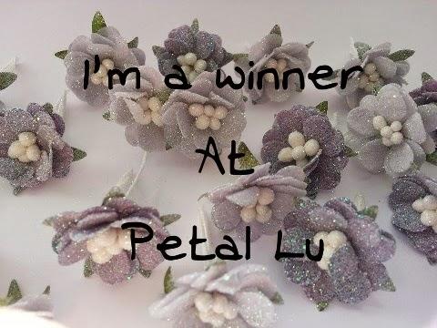 Petal Lu Winner