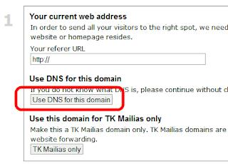 Выбираем использование DNS на dot.tk