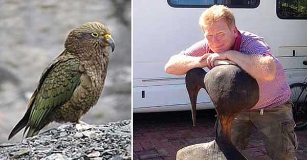 Peter Leach (kanan) kecewa beg hilang, disambar burung kea (kiri).