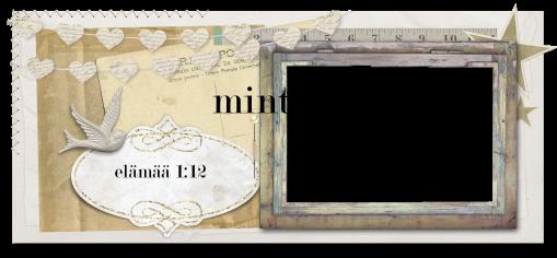 minttumeiramin miniatyyrit