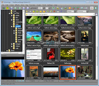 Download FastStone 7.6 Full Editor Photos And Fast Record and Capture
