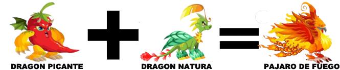 como sacar al dragon pajaro de fuego en dragon city combinacion 2