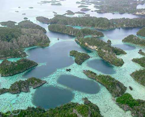Indonesian beach resort raja ampat beach - Raja ampat dive resort ...
