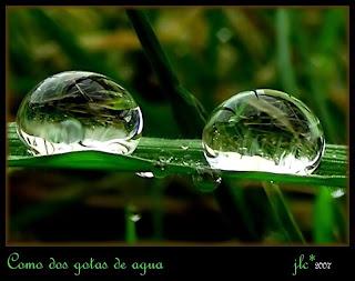 FOTOS DE GOTAS DE AGUA