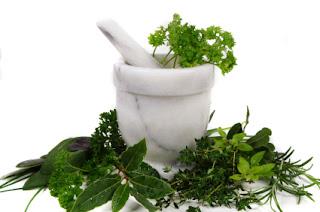 Jual obat sipilis herbal de nature