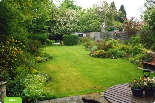 landscape design for rectangular backyard