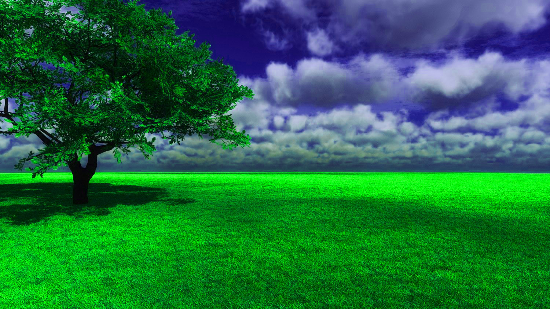 Nature Background Picsart