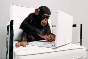 foto luciu sipanse