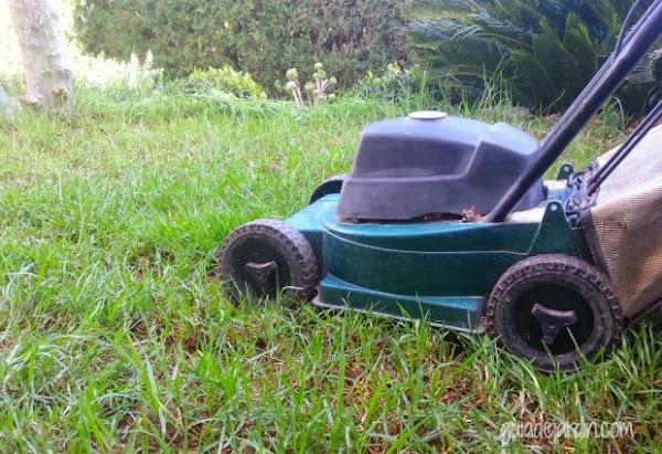 Mi antiguo cortacésped de carro