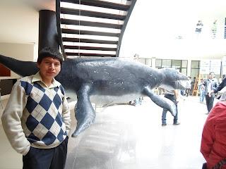 En-el-Museo-Arqueológico-de-Huaraz