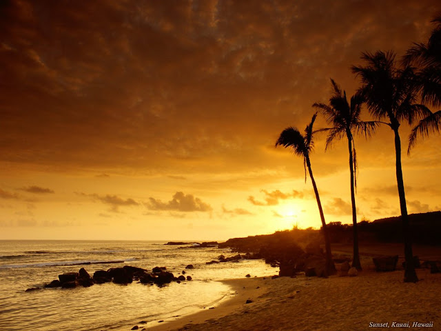 Sunset on beach wallpaper