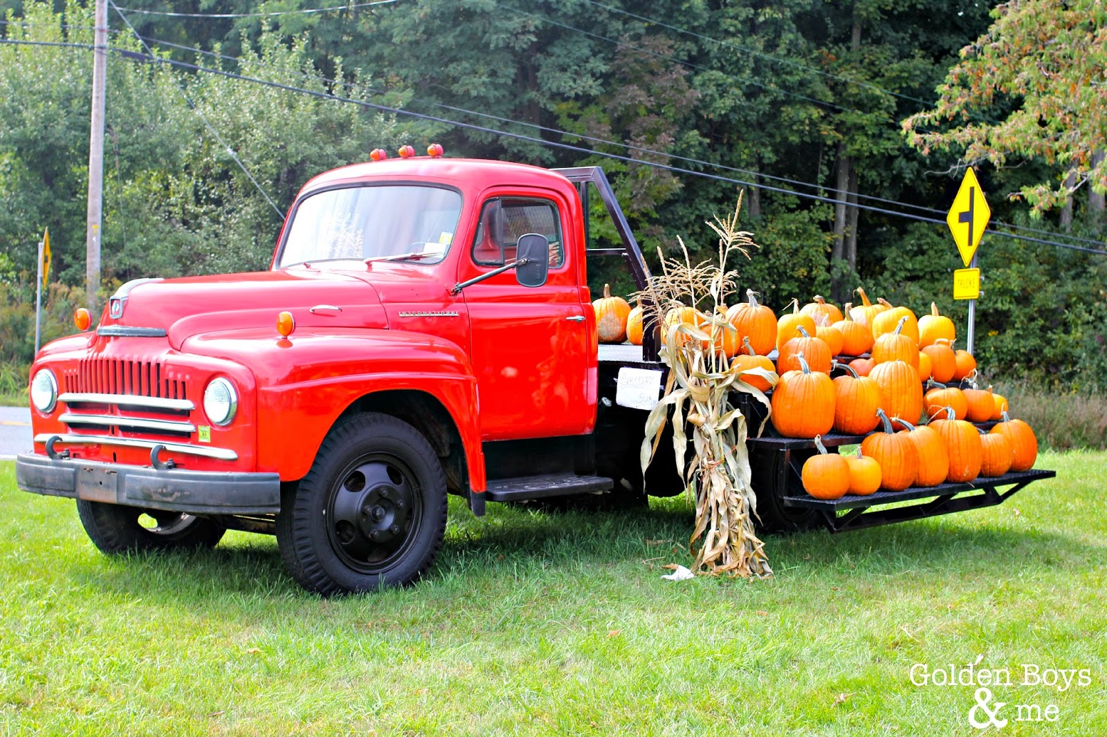 Vintage red pick up truck with pumpkins at Gunnison's Orchard in NY via www.goldenboysandme.com