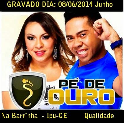 [CD] PÉ DE OURO AO VIVO NA BARRINHA IPU-CE 08/06/2014