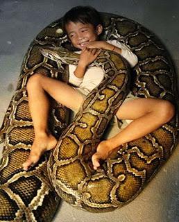 criança e anaconda (3)