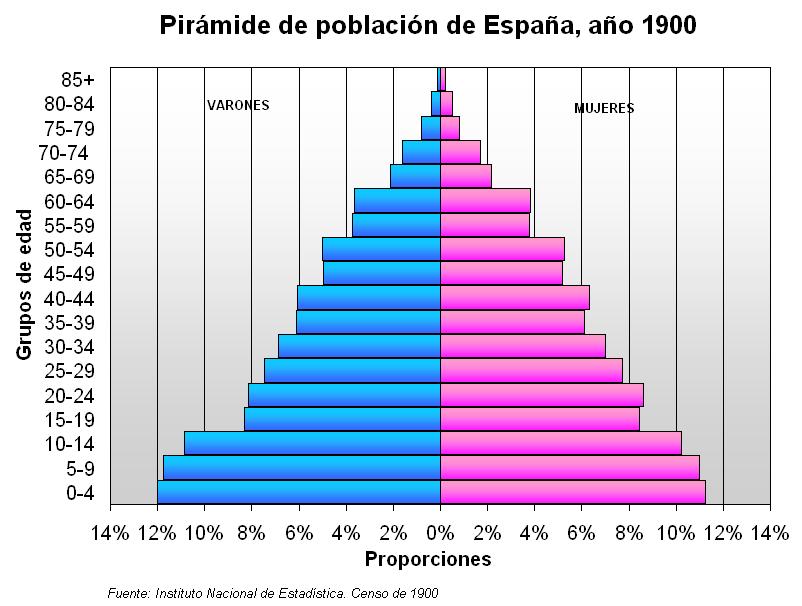 como se estructura la poblacion: