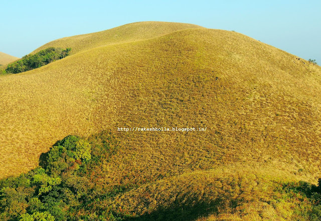 Save Western Ghats