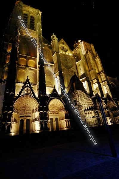 vue nocturne de la cathédrale de Bourges