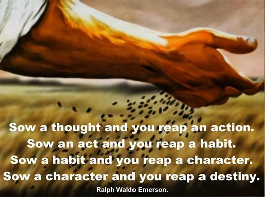 Thought for the day : Chains of habit | Daily Inspirations for ...