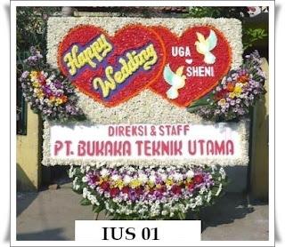 IUS+01