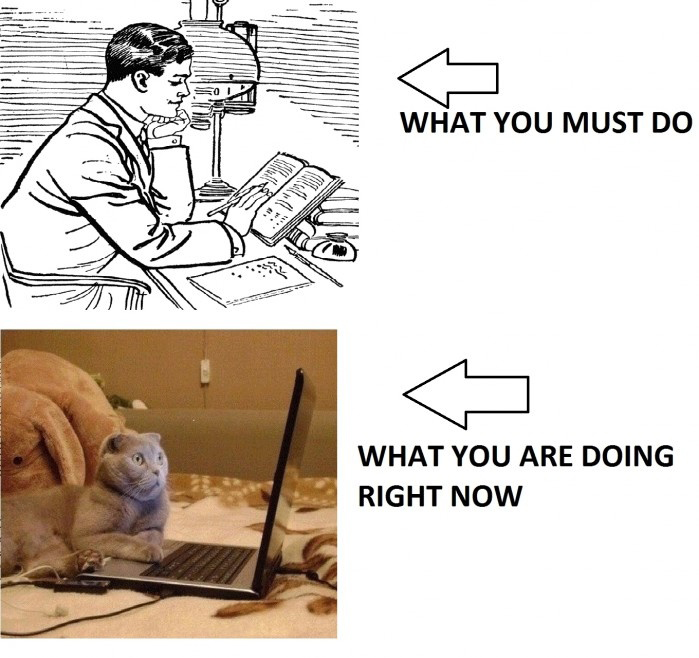 What You Must Do vs. What You Are Doing Right Now