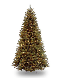 7.5-Feet Spruce Tree