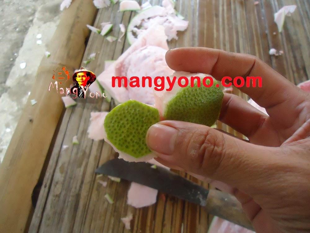 Ubar kokoloteun / obat awet muda dari kulit jeruk bali