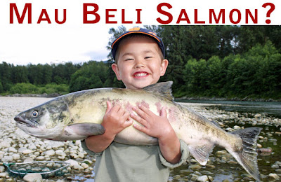 jual salmon jakarta