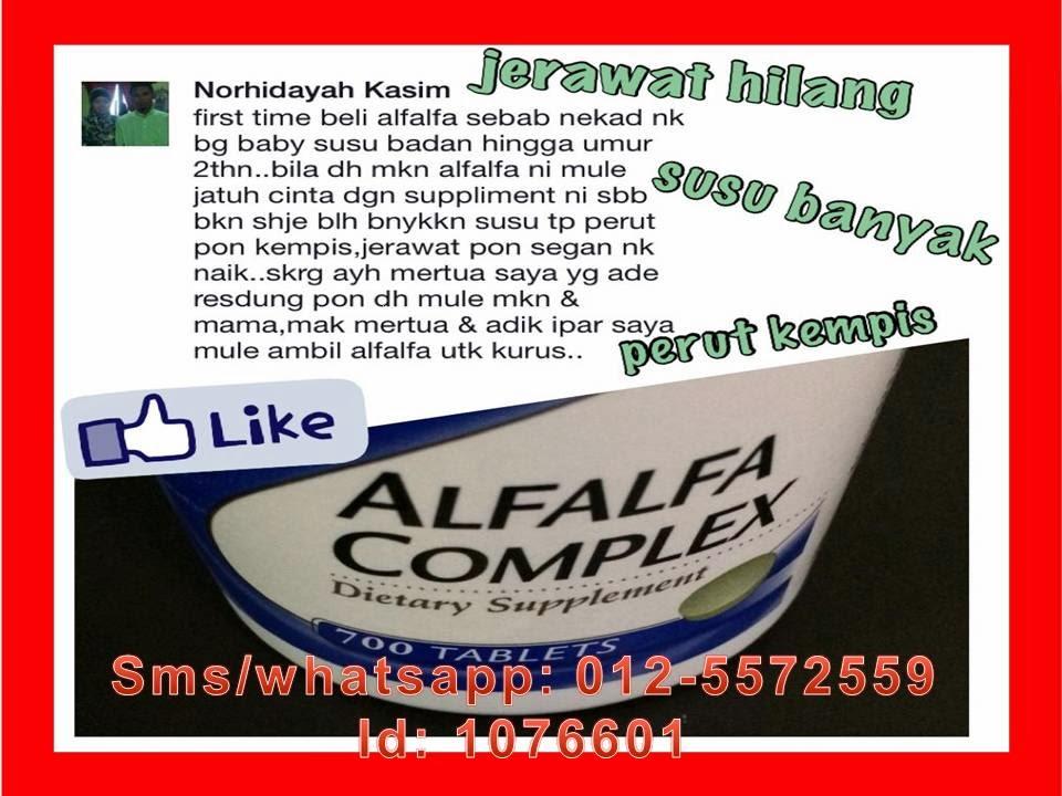cara makan alfafa