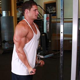 vezbe za triceps 4b