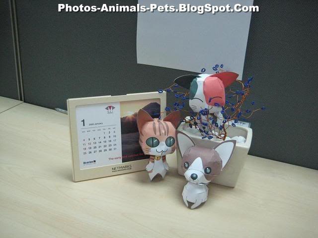 http://3.bp.blogspot.com/-AhJYw4VGBZQ/Te_JH-Wy6JI/AAAAAAAABSc/YG3F4MLWwSs/s1600/dogs%2Band%2Bcats_0001.jpg