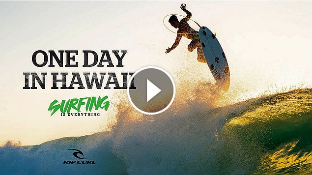 One day in Hawaii Mirage Boardshorts