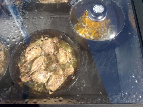 horno-solar-pollo-coccion