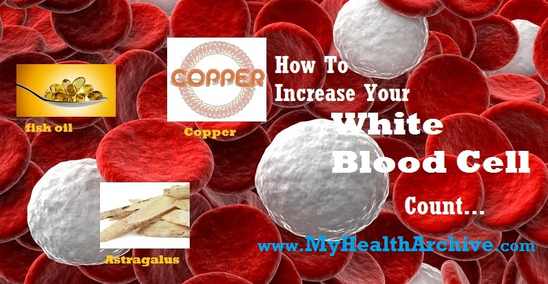 wbc ways to increase your white blood cell count my