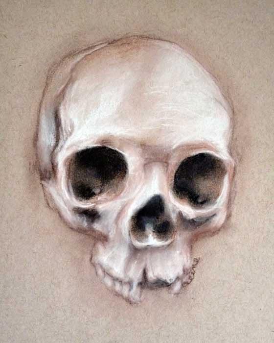"""""""Skull"""" by Celene Petrulak 2014"""