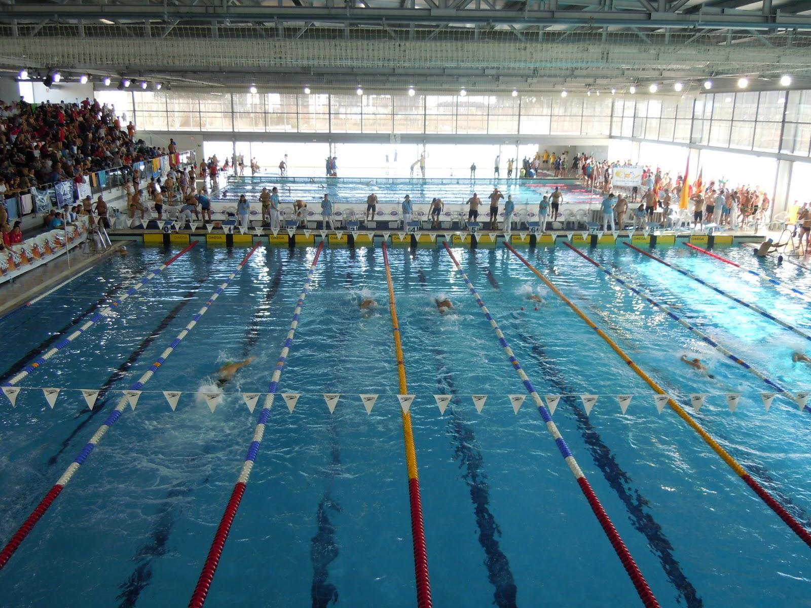 Nadando en libertad enero 2012 for Piscina municipal de valencia